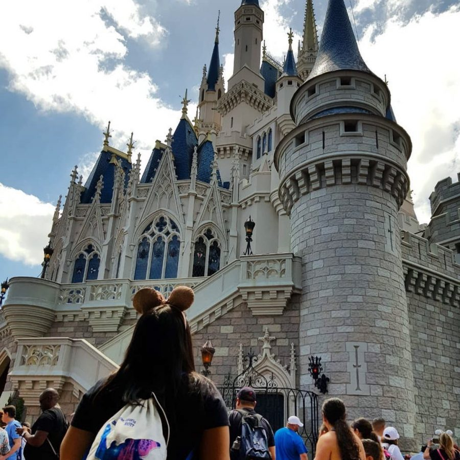 Castelo Cinderela Magic Kingdom Disneyria no Instagram